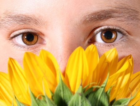peeping: Hazel eyes peeping over the petals of a sunflower
