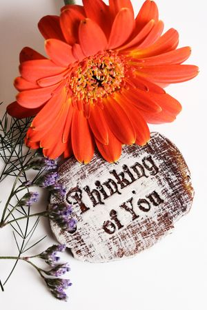 thinking of you: The words Thinking Of You engraved on a small wooden plaque