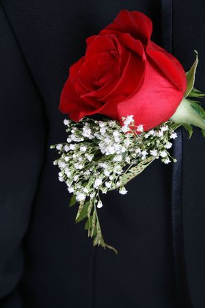Red rose corsage against a dark suit Stock Photo - 8240608