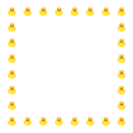 Toy ducks in row border on white background photo