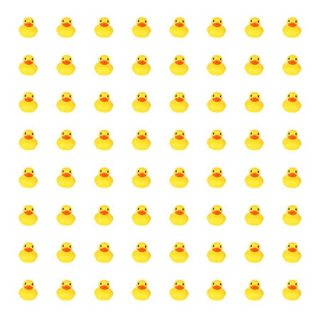 rubber ducky: Yellow toy ducks in row background against white