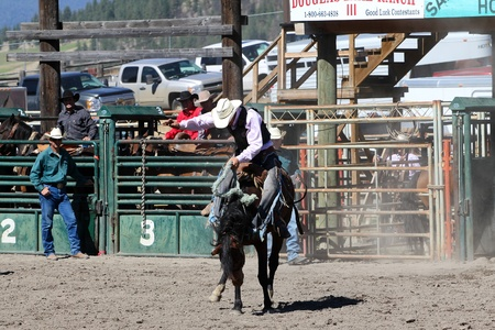 MERRITT, B.C. CANADA - SEPTEMBER 3: Cowboy during saddle bronc event at The 52nd Annual Pro Rodeo September 3, 2011 in Merritt British Columbia, Canada  Stock Photo - 10484771