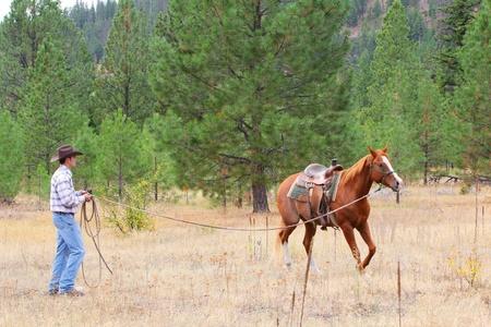 Jonge cowboy trainen van zijn paard in de wei