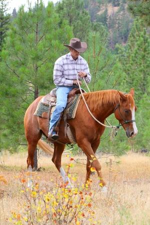 Young cowboy training his horses in a meadow Archivio Fotografico