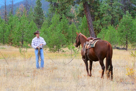 working cowboy: Cowboy working his horse in the field Stock Photo