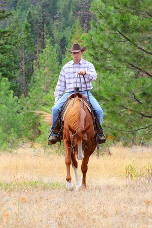 Cowboy working his horse in the field photo