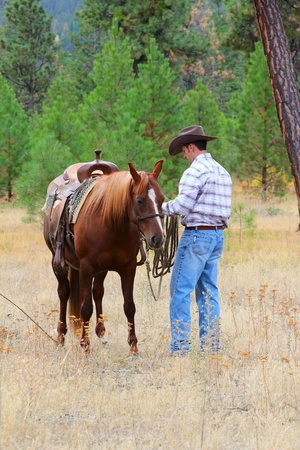 western saddle: Cowboy working his horse in the field Stock Photo