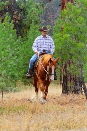cowboy on horse: Young cowboy riding his horse in the field