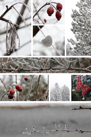 Combination of frosty winter nature and outdoor images photo