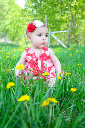Brunette baby girl sitting in a field with dandelions photo