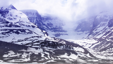 icefield: Snow-covered columbia icefield, jasper national park, alberta, canada