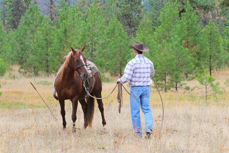 reigns: Young cowboy working with his horse in the field Stock Photo