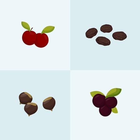 dates fruit: Frutas y frutos secos
