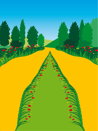 Landscape with footpath and flowers Vector illustration