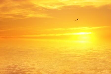 Orange sea sunset photo