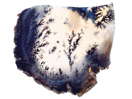 dendrite: Natural Agate Isolated on White Background  Agata muschiata  Northern Hunger Steppe in Kazakhstan