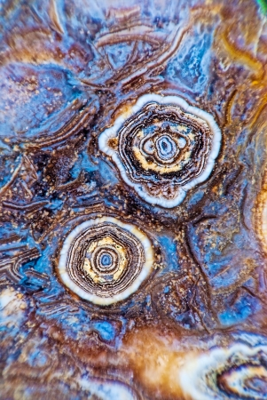 gem: Two Buds of Agate in Stone. Very large scale macro.