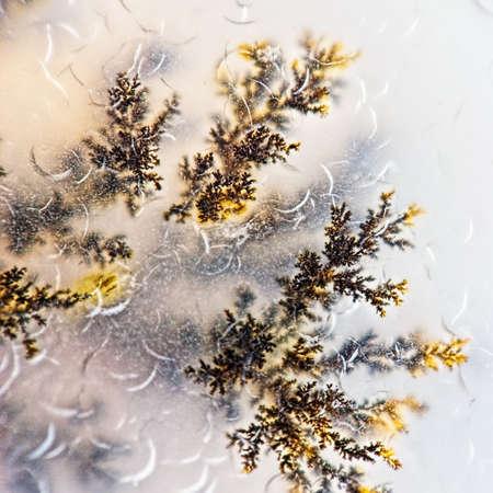 Microcrystals dendrite inside the stone macro. Kazakhstan Imagens