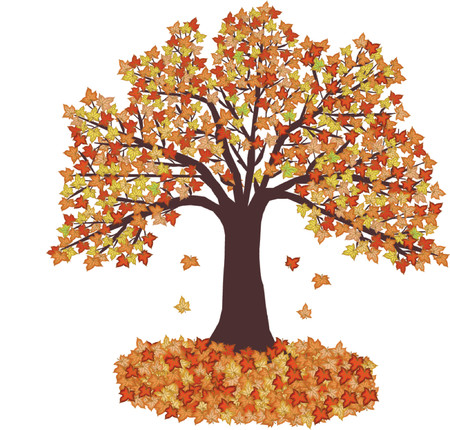 defoliation: Autumn Leaves and tree - vector illustration Illustration