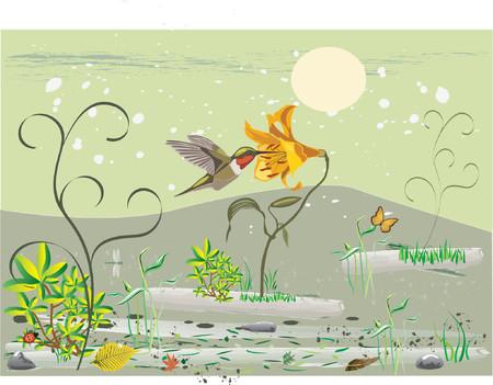 wingspan: Colorati uccelli tropicali e di fiori grafica
