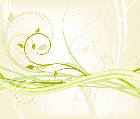 helechos: Floral fondo - Vector  Vectores