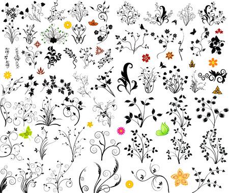 Floral Background  - vector set Illustration