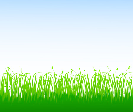 Green grass Stock Vector - 4704631
