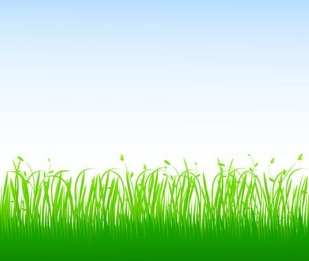 Green grass Stock Vector - 4704631