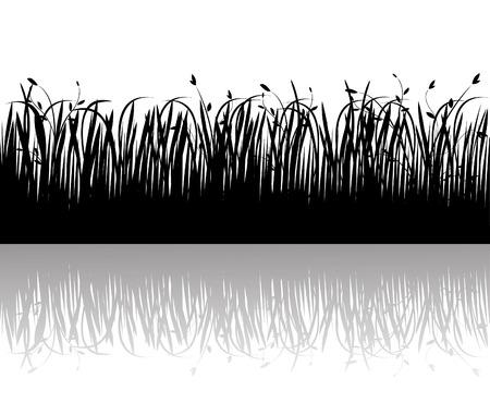 Grass Stock Vector - 4704630