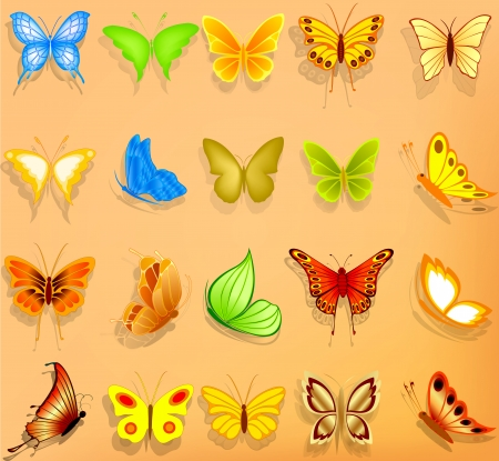 Set of realistic vector butterflies Vector