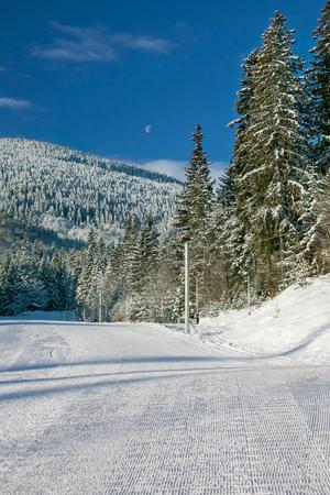 winter fun: Winter fun Stock Photo