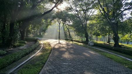Ray of morning light Stock Photo