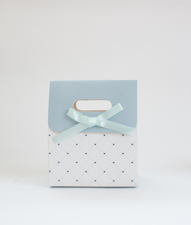 Blue pattern gift bag on white background. Stock Photo