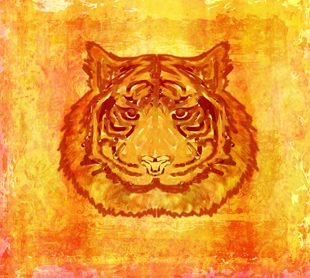 vintage paper background with tiger burnt paper       photo