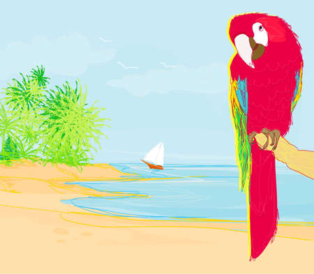 Colourful parrot bird sitting on the perch on the beach Stock Vector - 12744384