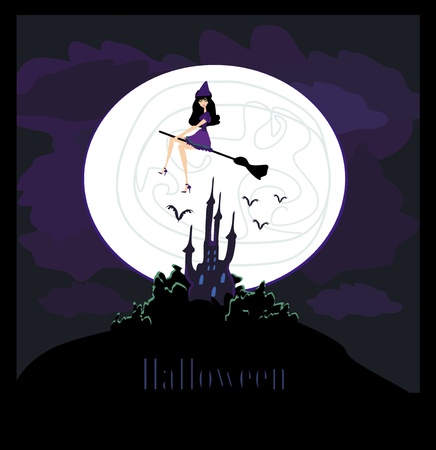 Witch flying on a broom in moonlight Stock Vector - 12885917