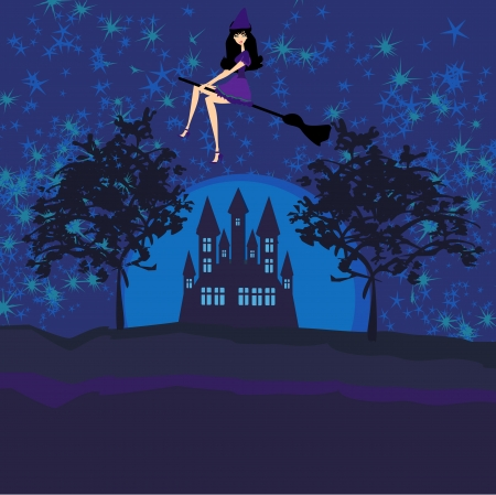Witch flying on a broom in moonlight   Stock Vector - 13799832