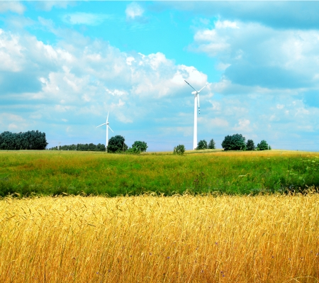 green meadow with Wind turbines generating electricity Stock Photo - 14597805