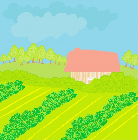 Vector Landscape - Farm and fields  Vector