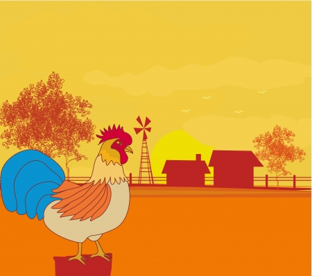 illustrations of crowing rooster on farm backgrounds. Stock Vector - 16757260