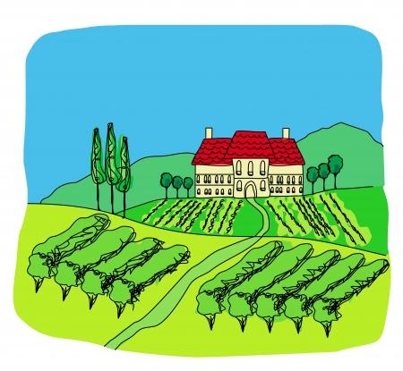 illustration of vineyard Stock Vector - 16854050