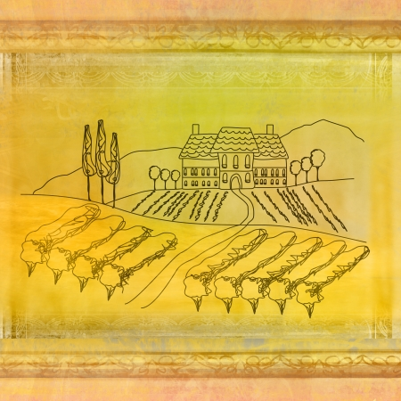 wine label - hand drawn vineyard, grunge background Stock Photo - 17192527