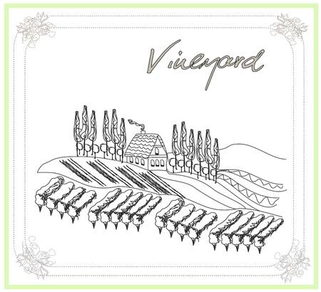 illustration of vineyard  Stock Vector - 17192522