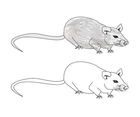 scare:  cartoon rat doodle