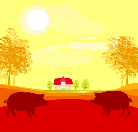 porker: Herd of pigs on nature background
