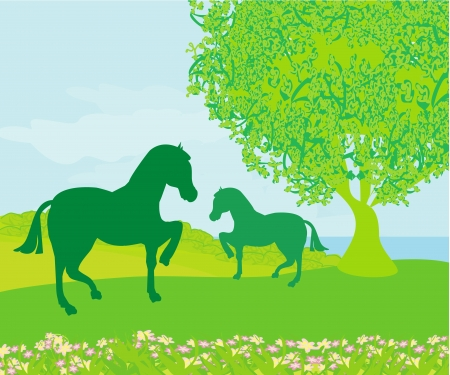 Horses in field  Vector