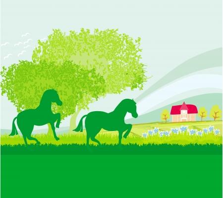 stirrup: Horses in field Illustration