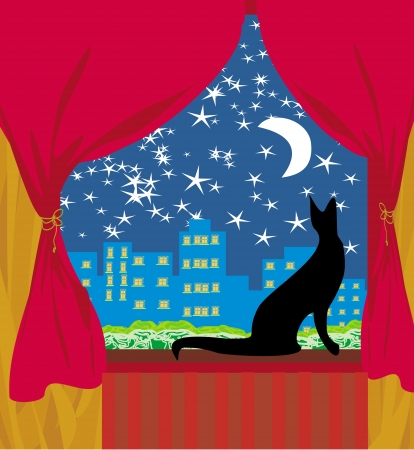 cat looks out the window Stock Vector - 19339454