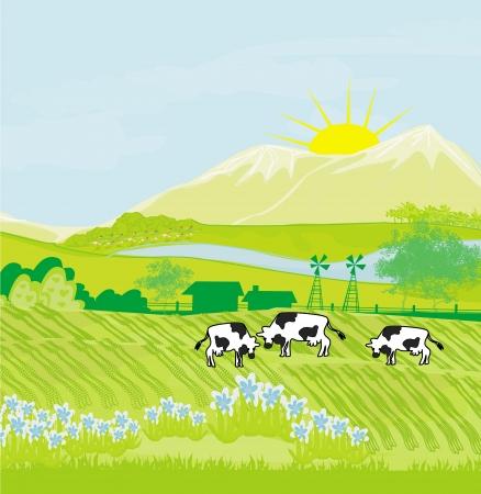 Cows grazing in green meadow Stock Vector - 21534313