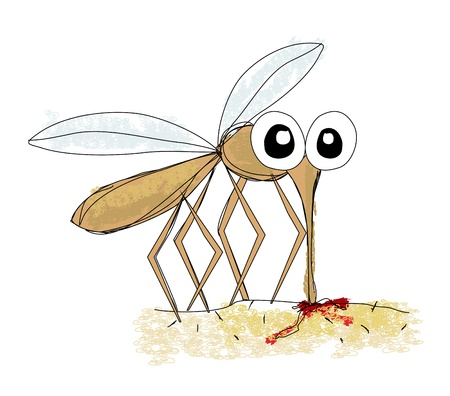 dengue fever: Mosquito, hand drawing vector